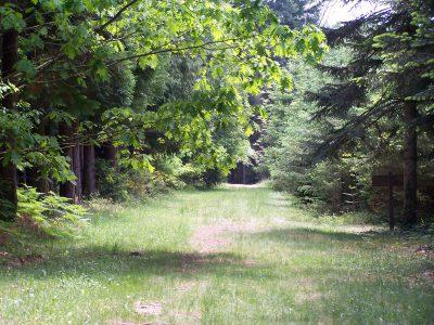 Arboretum de Cardeilhac