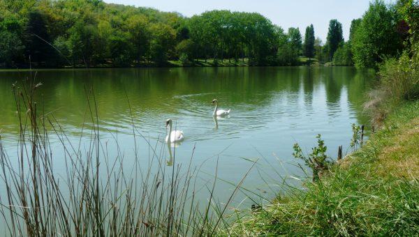 Lac de Boulogne-Sur-Gesse
