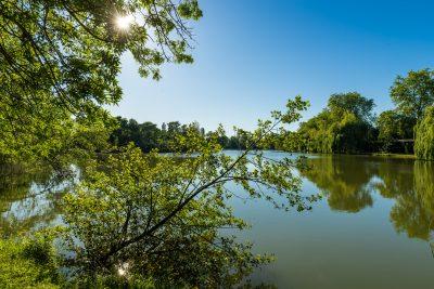 Lac de Peyssies
